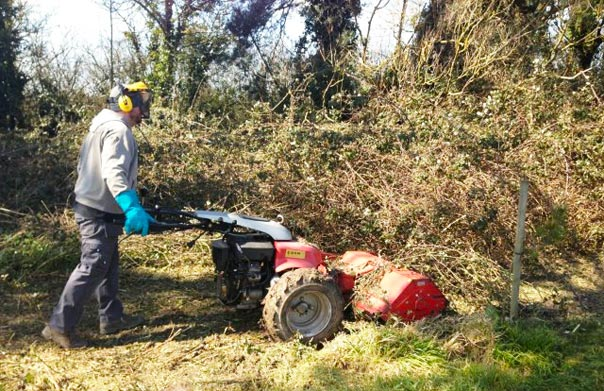 Clearing dense overgrowth with specialist plant