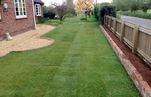 The completed lawn ready for watering